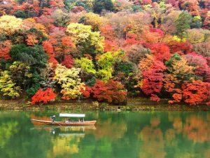 紅葉を楽しむのは観光地がベスト?