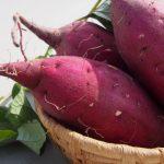 サツマイモ収穫時期と保存方法と栄養素