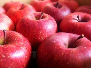 これで安心、リンゴの美味しい保存方法や長期保存レシピはこれ!.